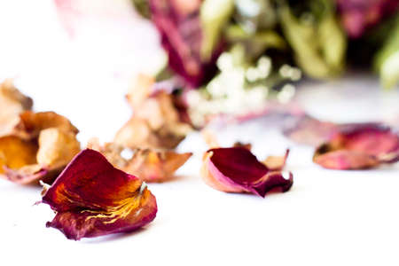 sere: A bouquet of Dried Flowers from Valentine day Stock Photo