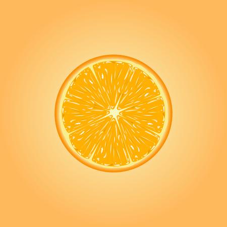 orange slice: Vector illustration of fresh orange slice.