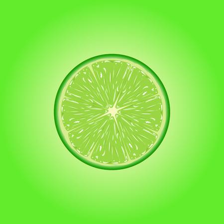 Vector illustration of  fresh lime slice. Illustration