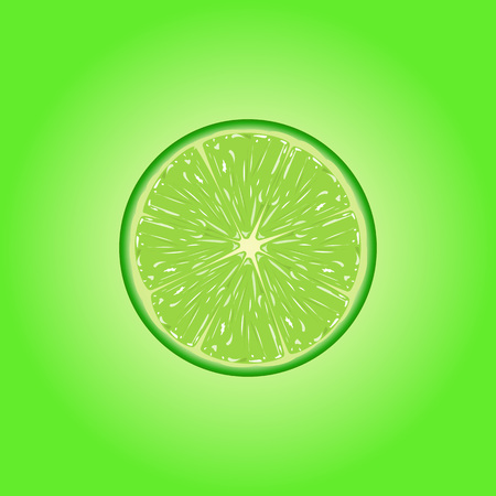 limon: Vector illustration of  fresh lime slice. Illustration