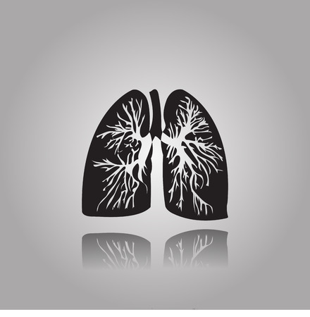 Human lungs illustration with bronchial tree .