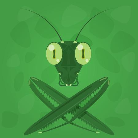locust: Mantis icon on a green background. Vector illustration. Illustration