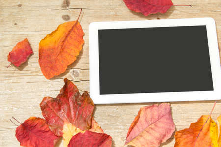 portability: White digital tablet and autumn leaves on wooden background