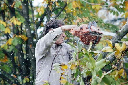 Man cutting tree with chain saw 스톡 콘텐츠