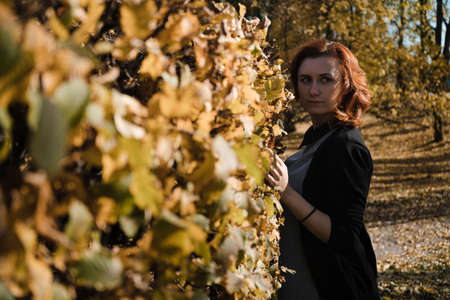 Happy redhead woman throwing and playing with autumn leaves starting fresh new life in Prague