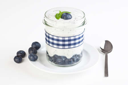 Fresh self made blueberry yogurt Stock Photo - 16520604