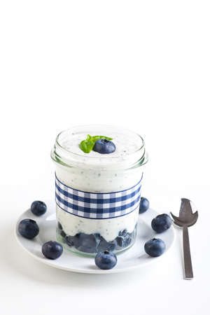 Fresh self made blueberry yogurt Stock Photo - 16520602