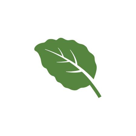 mint leaf element vector icon. green mint leaves vector symbol design