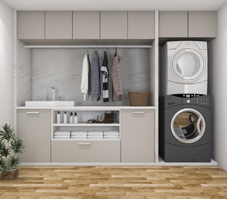 3d rendering wood minimal laundry room with plant