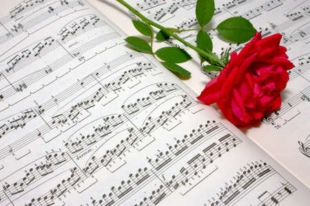 Single red rose lies on the open musical score sheets Stock Photo - 7642643