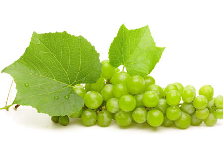 clusters: Green grape with leaves and water drops closeup isolated on white
