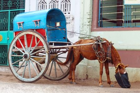 Handmade indian carriage with horse is waiting for passengers.                                  photo