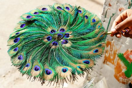 Fan made of peacocks tail photo
