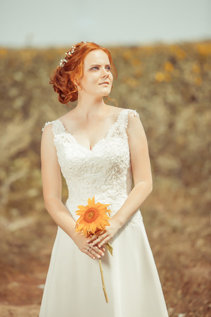 young adult woman: Beautiful red haired bride on the sunflowers field background.