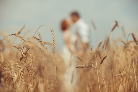 foreground focus: Happy embracing couple on the wheat field foreground. Focus point on wheat. Stock Photo