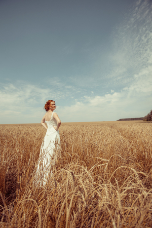 red haired: Happy red haired walking bride on the wheat field background.