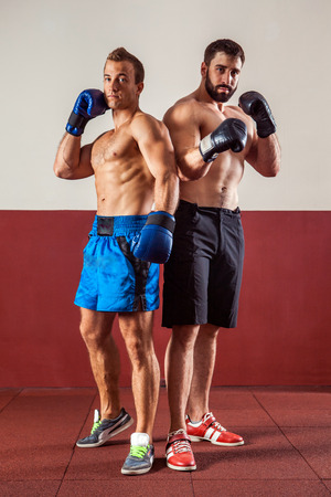 Muscular boxers in boxing gloves are ready for fight. Stock Photo