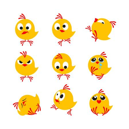 pollitos: pequeños polluelos divertidos incluidos en un fondo blanco