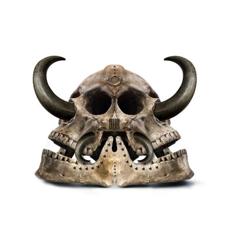 cow teeth: twofold mysterious skull with sharp horns Stock Photo
