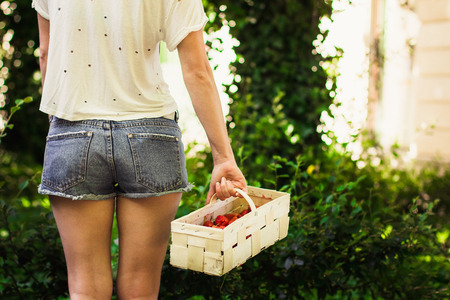 gir: Girl with a basket of strawberries