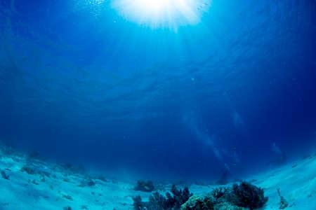 水中の日光