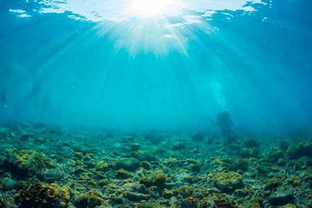 Raggi di luce del sole che splendono in mare, vista subacquea