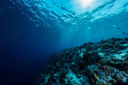 Stralen van het zonlicht schijnt in de zee, onderwater weergave Stockfoto