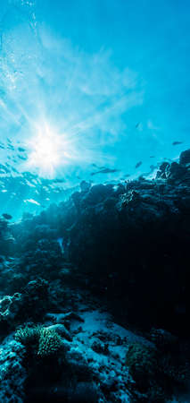 Rays of sunlight shining into sea, underwater view Stock Photo
