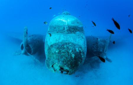 ship wreck: Wreck diving