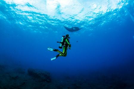 islas: Manta Ray