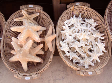 exploited: Dead Starfish for sale as souvenirs in a shop Stock Photo