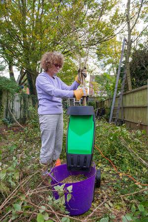 shredding: Woman in her garden putting small branches into a shredding machine