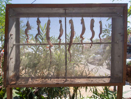 keep out: Octopus being dried in a mesh cage to keep out the flies in a Greek resort Stock Photo