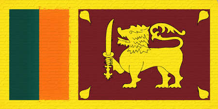 sri lankan flag: Illustration of the flag of Sri Lanka looking like it has been painted onto a wall. Stock Photo