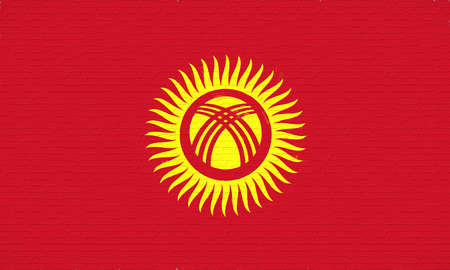 Illustration of the flag of Kyrgyzstan  looking like it is painted onto a wall.