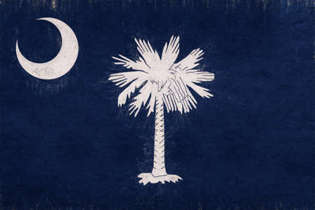 Illustration of the flag of South Carolina state in America with a grunge look.