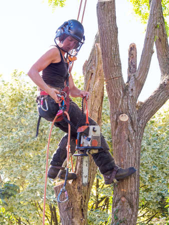 Female Tree Surgeon securing her chainsaw.