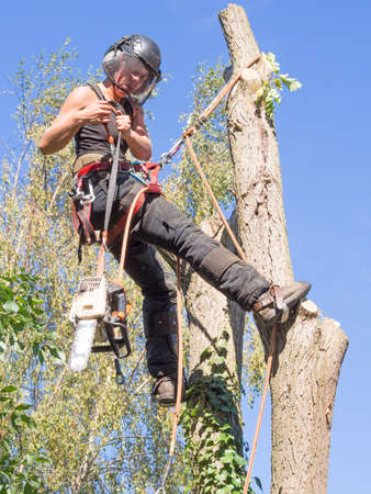 Female tree surgeon getting ready to use a chainsaw while roped to a tree.