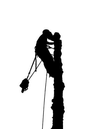 Illustration silhouette of a tree surgeon at the top of a tree with a chainsaw.He has a safety harnes and ropes