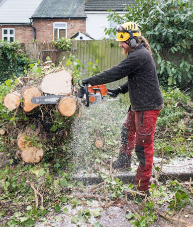 Arborist or Tree Surgeon at work using a chainsaw to cut up a fallen tree.The tree Surgeon is wearing chainsaw safety equipment.Motion blur of the sawdust and chippings. Stok Fotoğraf