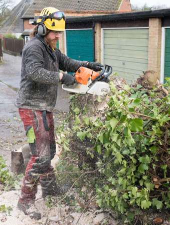 A tree surgeon or arborist is covered in sawdust cutting up a felled tree.The tree Surgeon is wearing chainsaw safety equipment. Motion blur of the sawdust and chippings. Banco de Imagens
