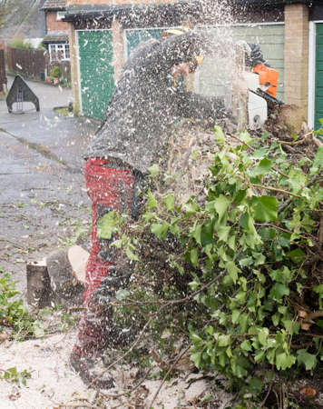 Tree Surgeon or Arborist covered in sawdust while cutting up a fallen tree.The tree Surgeon is wearing chainsaw safety equipment. Motion blur of the sawdust and chippings. Banco de Imagens