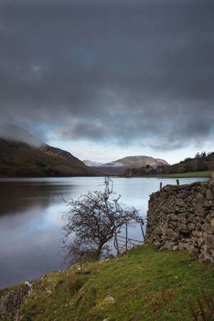 The wall and tree is by Crummock Water.  Crummock Water is located in the Lake District National Park in the County of Cumbria,North West England,UK.