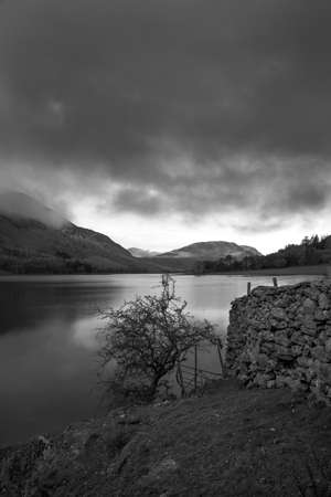 The Black and White image of a wall and tree is taken at Crummock Water. Crummock Water is located in the Lake District National Park in the County of Cumbria,North West England,UK.