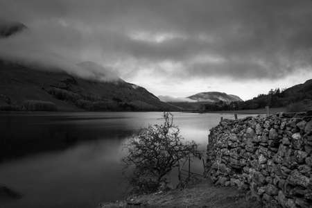 Black and White image of a small Tree and stone wall on the shoreline of Crummock Water in the Lake District National Park in the County of Cumbria,North West England,UK.