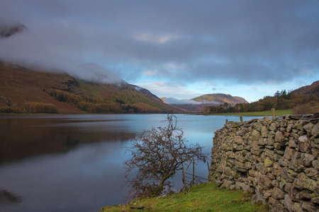 Shoreline of Crummock Water with a small Tree and stone wall.Crummock water is one of the lakes  located in the Lake District National Park in the County of Cumbria,North West England,UK.