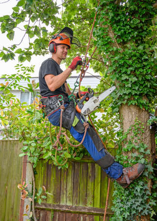 Tree Surgeon or Arborist with a chainsaw and safety equipment ready to work up a tree.