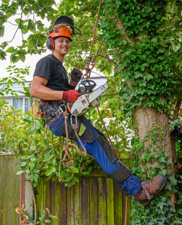 Smiling Tree Surgeon or Arborist with chainsaw and safety ropes starting work up a tree.