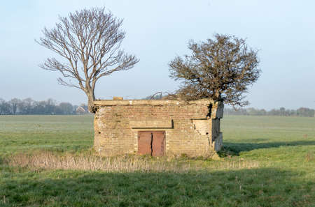 Old World War 2 pillbox in a fieldnear Dover,UK. Small trees are growing on the roof