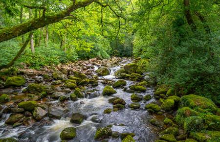 The River Plym on dartmoor flowing past Dewerstone on towards Plymouth in Devon,UK. Stock fotó